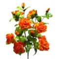 Роза Р58