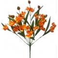 Орхидея ОРХ10