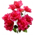 Роза Р81