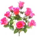 Роза Р88