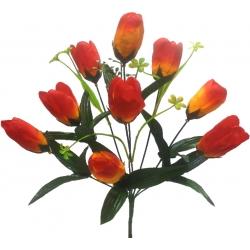 Тюльпан Т02