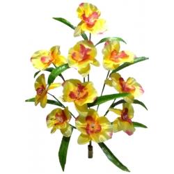 Орхидея ОРХ12