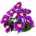Орхидея ОРХ16