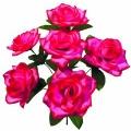 Роза Р97