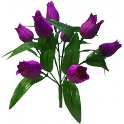 Тюльпан Т04