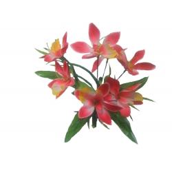 Орхидея ОРХ02