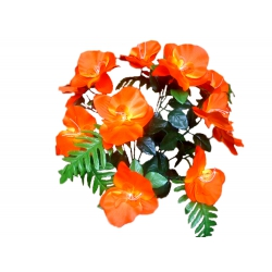 Орхидея ОРХ01