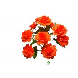 Роза Р23