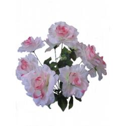 Роза Р14