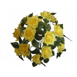 Роза Р06