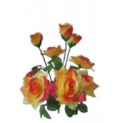 Роза Р02