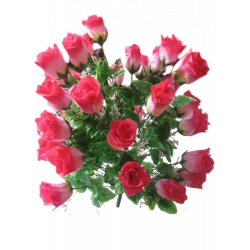 Роза Р13
