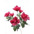 Роза Р12