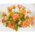 Роза Р48
