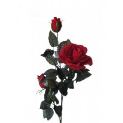 Роза бархат ВРБ02