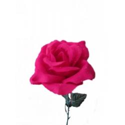 Роза РБ02