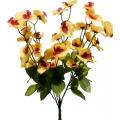 Орхидея   ОРХ08
