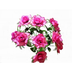 Роза Р21