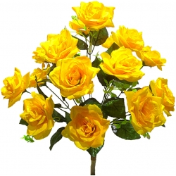 Роза Р83