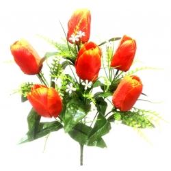 Тюльпан Т03