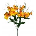 Орхидея ОРХ15