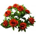 Роза Р98