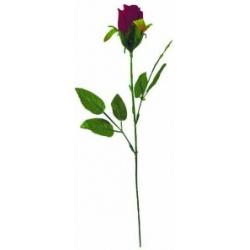 Роза бархатная ОРБ04