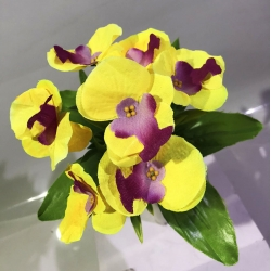Орхидея ОРХЗ04