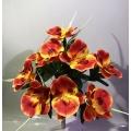 Орхидея ОРХ17