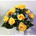 Роза Р112
