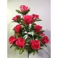 Роза Р114