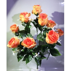 Роза Р145
