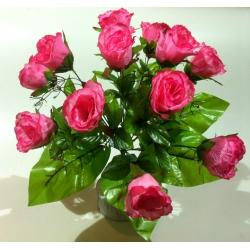 Роза Р26