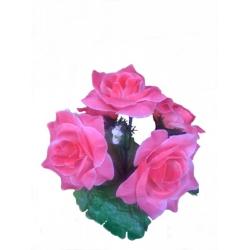 Роза РЗ03