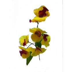 Орхидея ВОРХ02